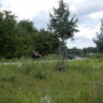 Dlouhodobé omezení provozu na cyklostezce z Ústí nad Orlicí-Kerhartic do Brandýsa nad Orlicí